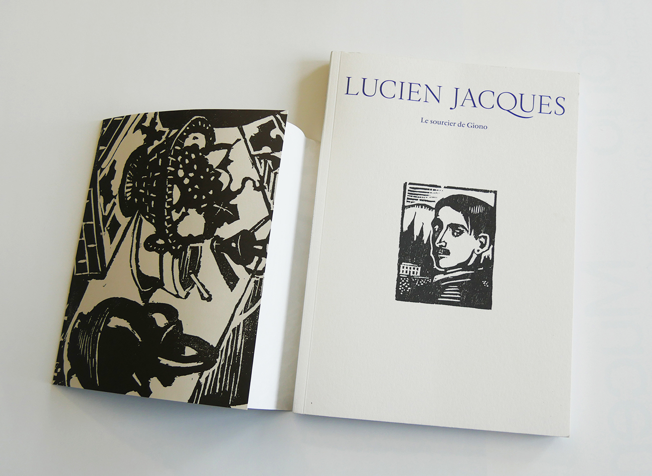 Catalogue exposition Lucien Jacques le sourcier de Giono, Mucem et Regards de Provence