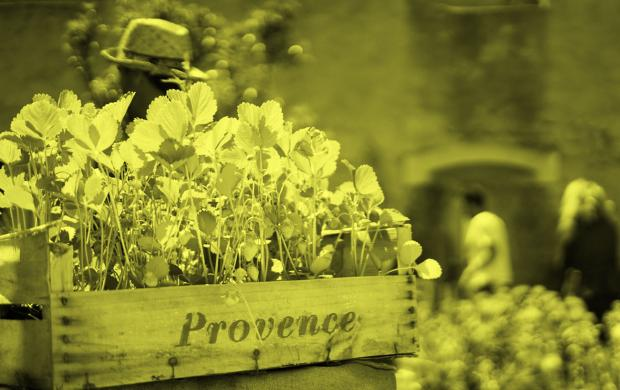 atelier jardin : jardiner en ville © Mucem Julie Cohen